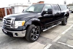 Neat Nigerian used Ford F-150 2009